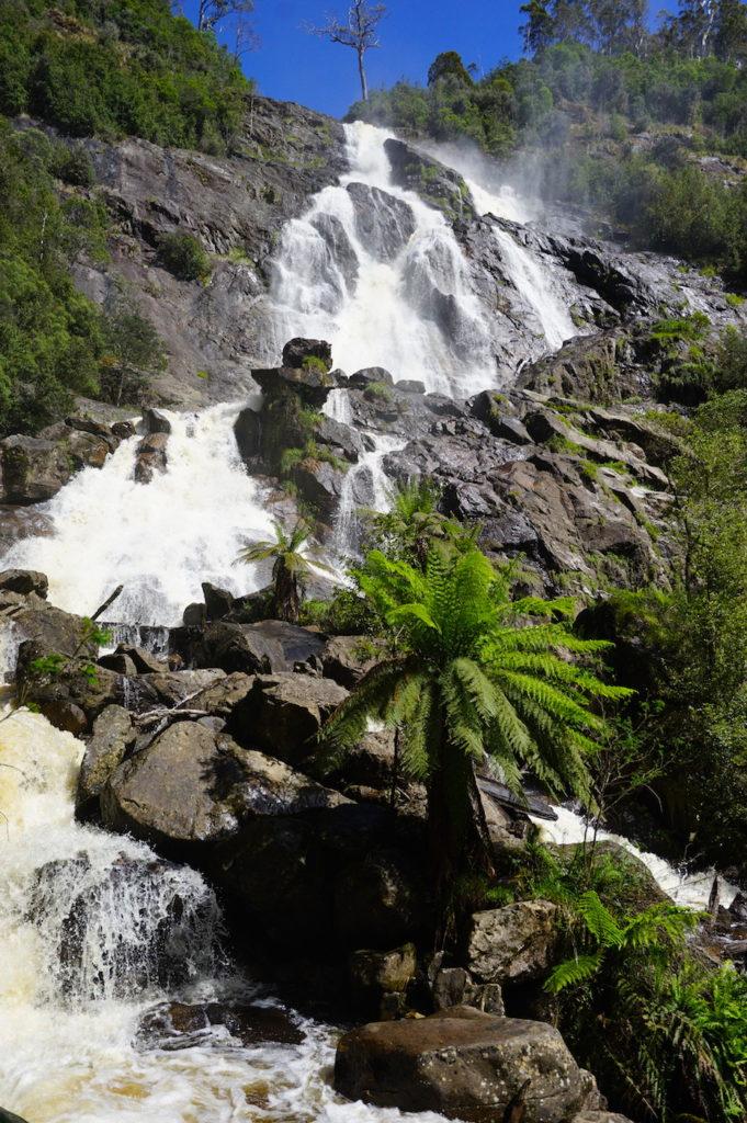 St. Columba Falls nahe Pyengana