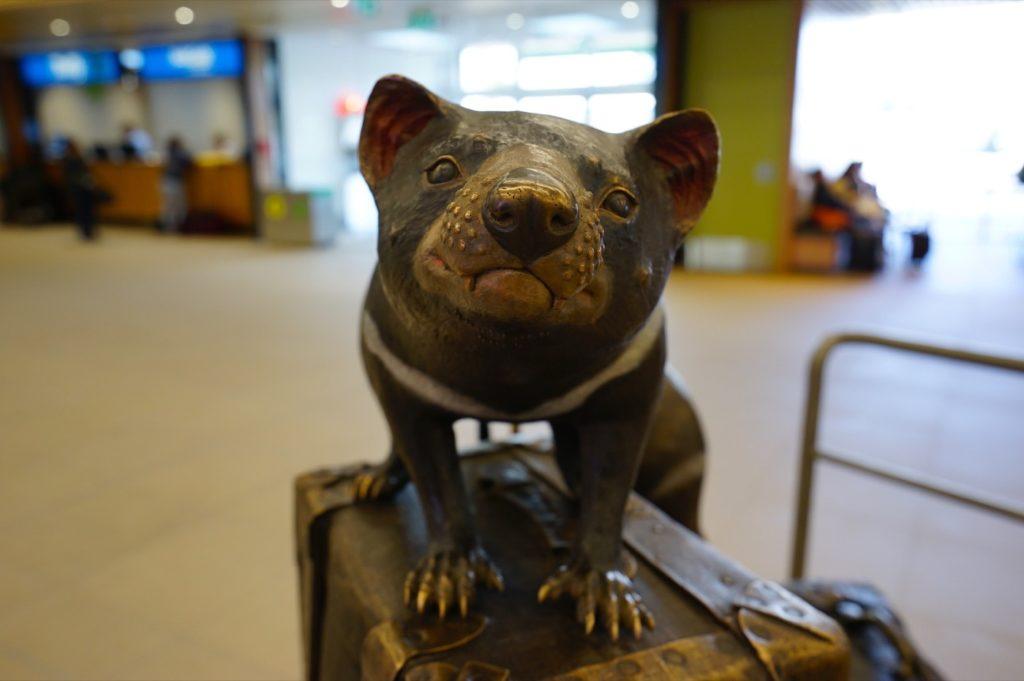 Zwischenzeitlich haben sie in der Ankunftshalle des Flughafens Hobart eine lustige Installation mit mehreren tasmanischen Teufeln auf Koffern aufgestellt