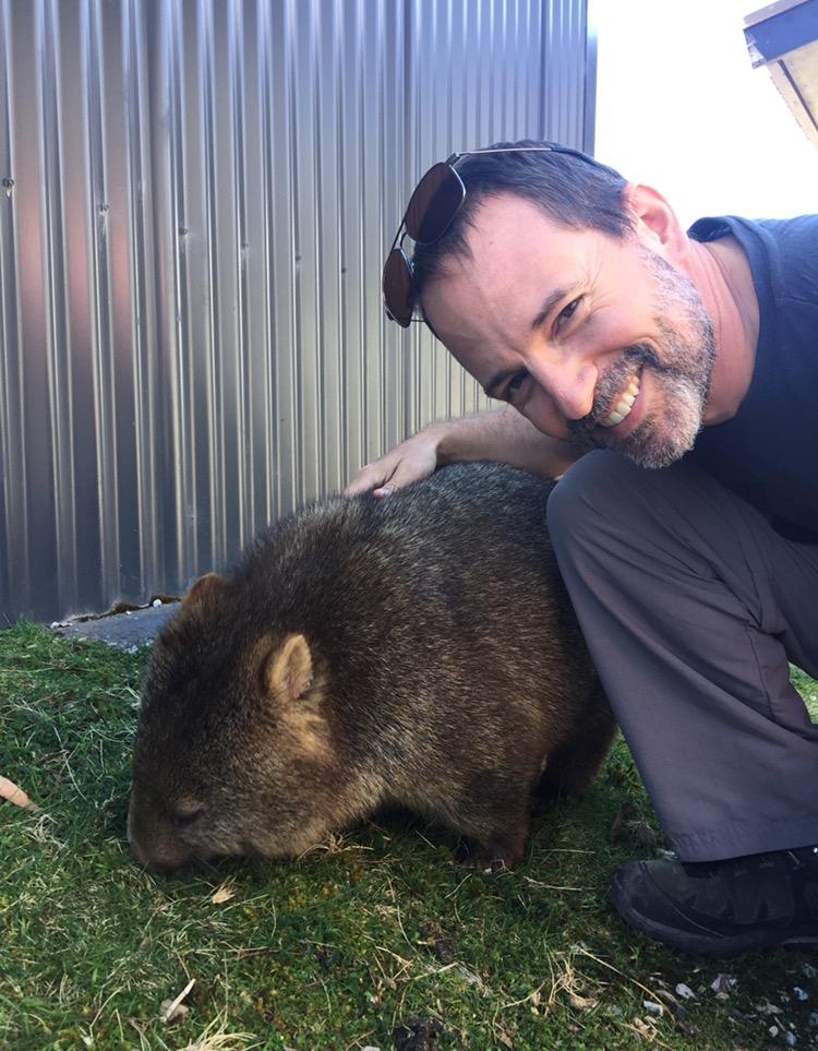 Wombat knuddeln